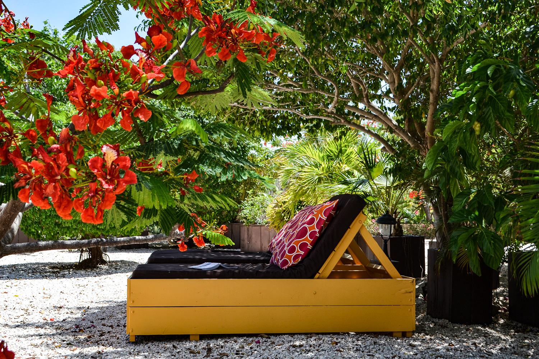 Garden Apartment - Jan Kok Lodges Curacao