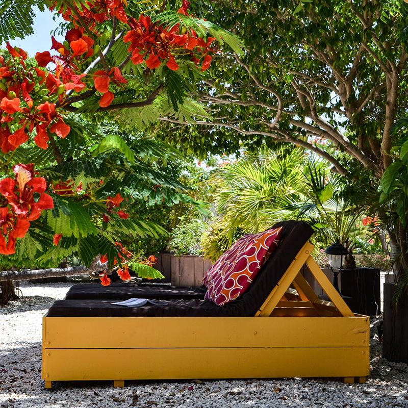Wohnungen mit Pool Curacao